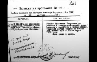 Выписка из протокола по делу В. Глушко