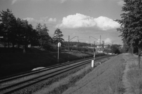 Track in Peredelkino. Photograph: PastVu